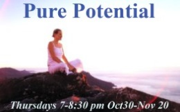 Pure Potential 263x165